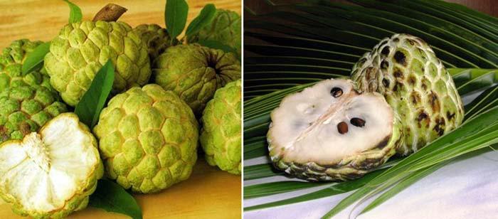 Аннона чешуйчатая Вьетнамский фрукт