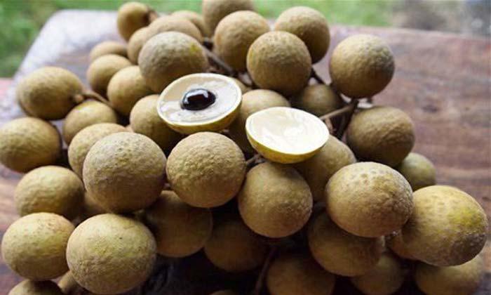 Лонган-фрукты Вьетнама