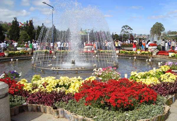 Сад цветов в парке Пренн Далат