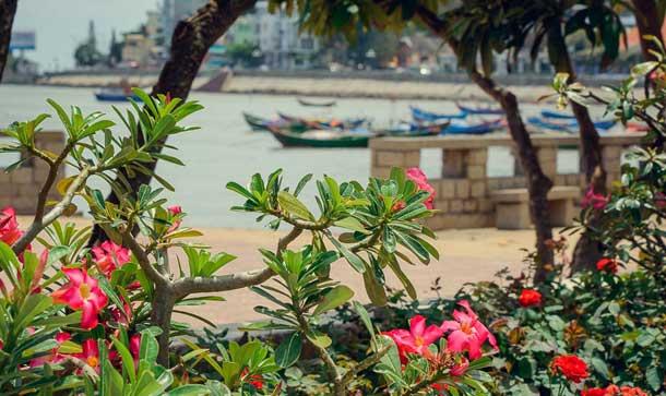 Погода вьетнам Фантьет фото