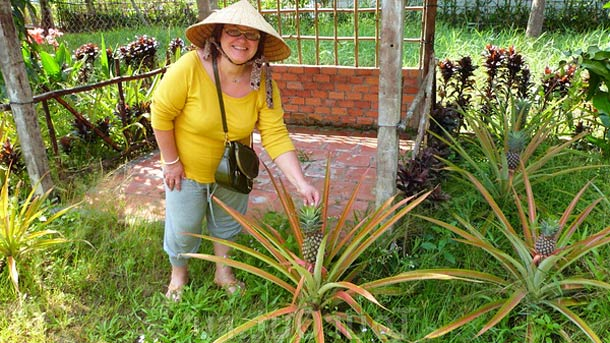 Фруктовые сады в Кантхо (Вьетнам)