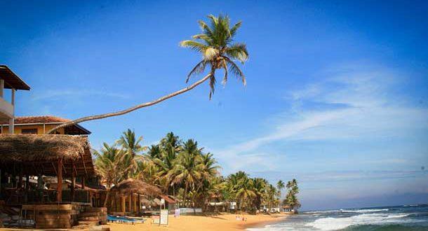 Отдых в Шри-Ланке