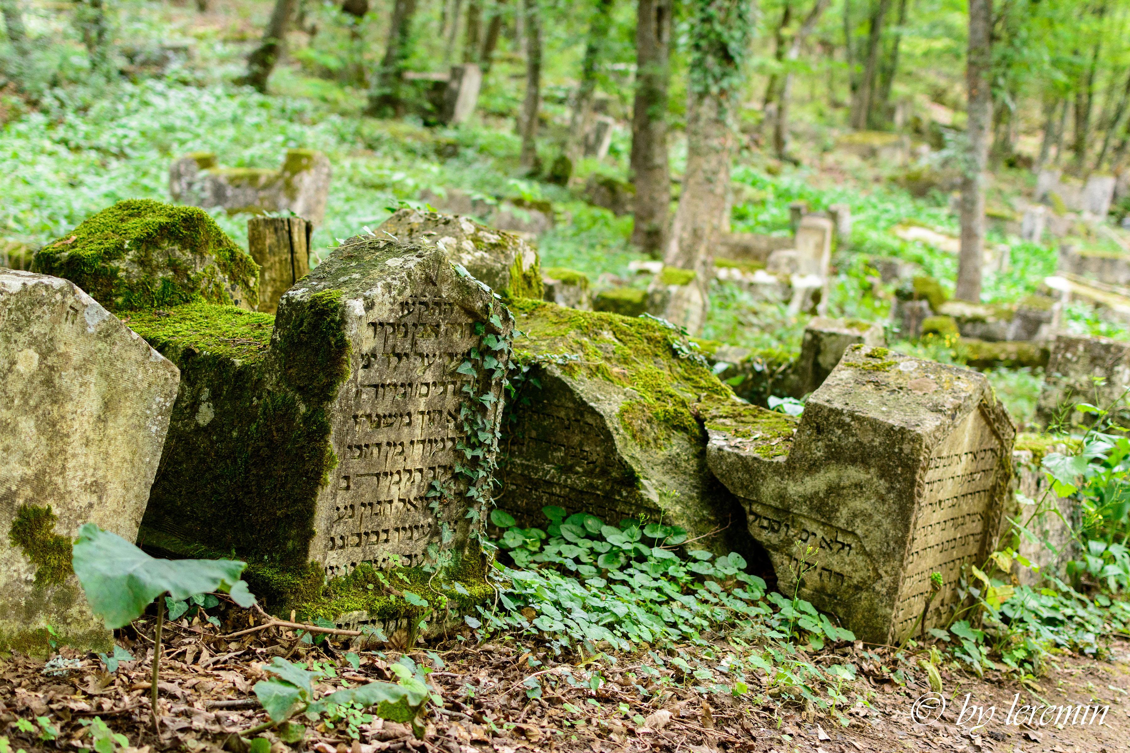 для караимские надгробия фото ему натали