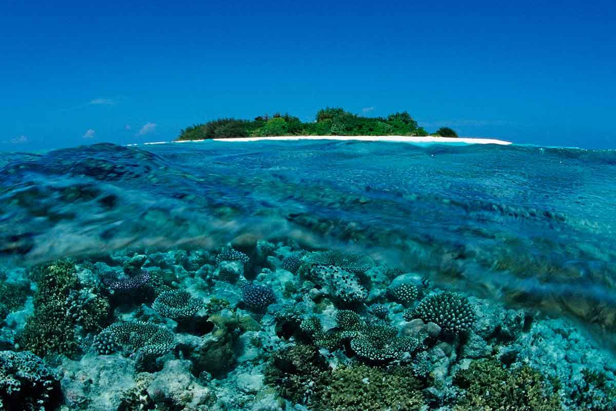 Что нужно знать, отправляясь на Мальдивы